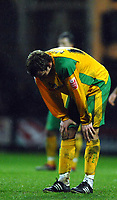 Photo: Paul Greenwood.<br />Preston North End v Norwich City. Coca Cola Championship. 20/02/2007. Dejection for Norwich's Chris Brown at the end of the game