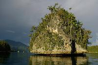 Triton Bay landscape.  Limestone islets.