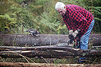 As his pet grouse watches from a nearby log, Jim Powell saws through timber that he harvested from his property Wednesday.