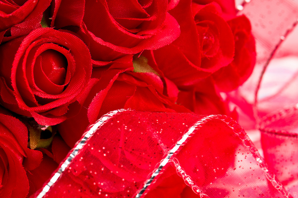 Close up macro of red roses and red ribbon use of selective focus.
