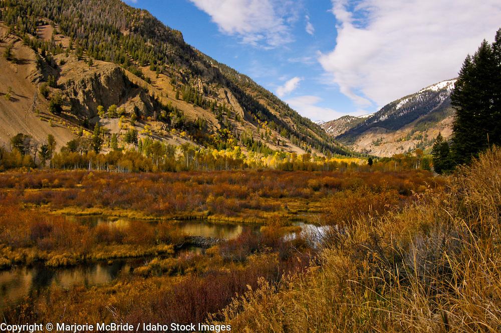 Trail Creek near Sun Valley Idaho