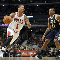 10 March 2012: Chicago Bulls point guard Derrick Rose (1) drives past Utah Jazz point guard Earl Watson (11) during the Chicago Bulls 111-97 victory over the Utah Jazz at the United Center, Chicago, Illinois, USA.