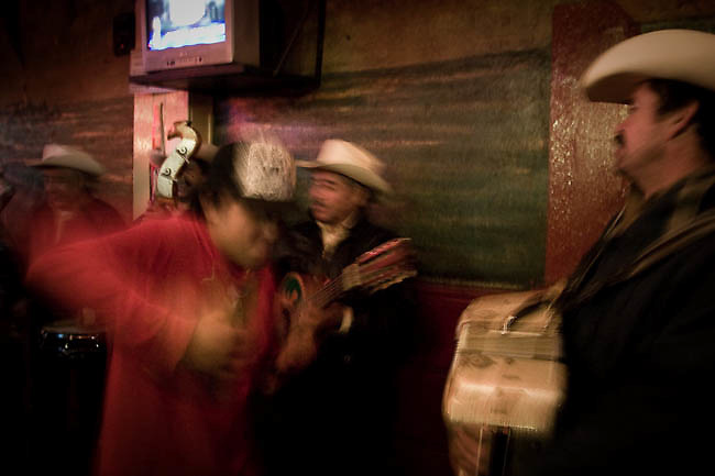 America, Mexico, Baja, Ensenada. Inside of one cantina the musicians plays a narcocorrido, the lyrics  of this kind of music refer to particular events and include real name, dates and places the is focus on drug smugglers activities. - 15.03.2009, DIGITAL PHOTO, 50 MB, copyright: Alex Espinosa/Gruppe28.