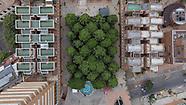 Juan Diego Buitrago Cano, El Futuro de las Ciudades, mención