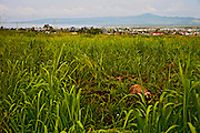 View of Ormoc City