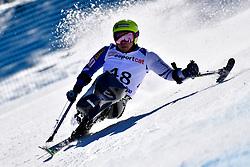 KANO Akira, LW11, JPN, Giant Slalom at the WPAS_2019 Alpine Skiing World Cup, La Molina, Spain