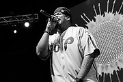 Dove a.k.a Plug 2 of De La Soul performs during the Summer Spirit Festival at Merriweather Post Pavilion in Columbia, Md on Saturday, August 5, 2017.