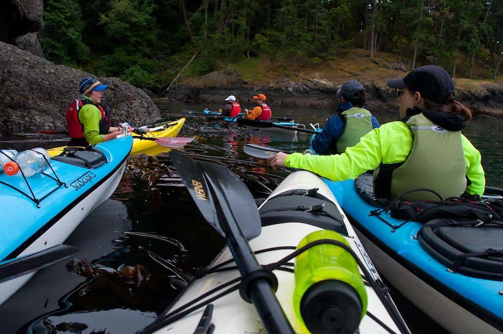 Kayaking with San Juan Outfitters in Haro Strait off Stuart Island, San Juan Islands, Washington, US