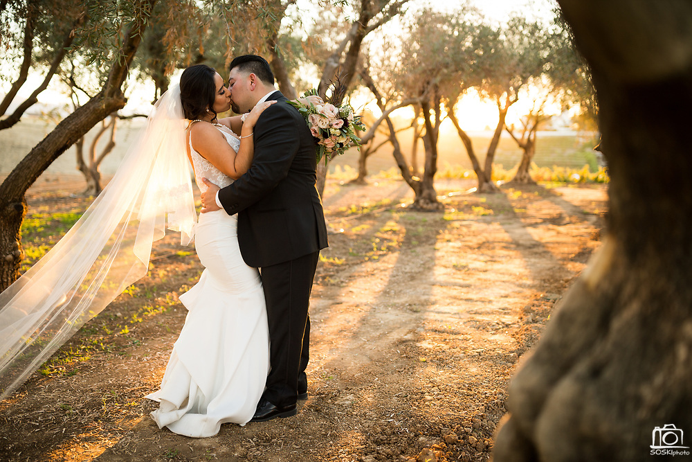 Jade and Oscar celebrate their wedding with friends and family at Leal Vineyards and Winery in Hollister, California, on October 27, 2017. (Stan Olszewski/SOSKIphoto)