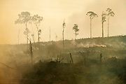 Palm oil plantations are rapidly expanding in Indonesia with severe environmental and social consequences.<br /> <br /> West Kalimantan, Borneo, Indonesia