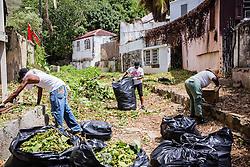 Volunteers Kai Frett, Era Hodge, and Linda Akins collect trash and debris in Savan Gut.  Residents and volunteers clean Savan Gut in  preparation for Tropical Storm Danny as a part of Savan CleanUp Day .  St. Thomas, USVI.  22 August 2015.  © Aisha-Zakiya Boyd