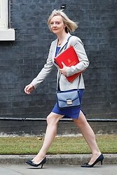 © Licensed to London News Pictures. 11/07/2017. London, UK. Chief Secretary to the Treasury LIZ TRUSS attends a cabinet meeting in Downing Street, London on Tuesday, 11 July 2017. Photo credit: Tolga Akmen/LNP