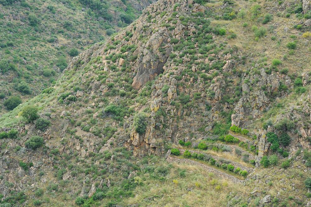 Faia Brava reserve, C&ocirc;a valley,<br /> Portugal