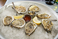 Oysters on the half shell at Faro Italian Grille.  (Karen Bobotas/for the Laconia Daily Sun)