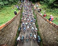 Tour of Britain - Stage 7 - Surrey