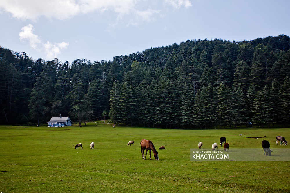 23 kms from Dalhousie by road and 13 kms from Kalatop is the mini Switzerland of India i.e. Khajjiar, at a height of 6400 ft. Hutchison writes, &quot;Khajjiar is a forest glade of great beauty, 6400 feet above sea level&quot;. <br /> <br /> On 07-07-1992, Mr. Willy t. Blazer, Vice Counselor and Head of Chancery of Switzerland in India brought Khajjiar on the world tourism map by christening it &quot;Mini Switzerland&quot;. He also put a sign board of a yellow Swiss hiking footpath showing Khajjiar's distance from the Swiss capital Berne-6194 kms. Khajjiar is among the 160 locations in the world that bear topographical resemblance with Switzerland. The Counselor also took from Khajjiar a stone which will form part of a stone collage around the Swiss Parliament to remind the visitors of Khajjiar as Mini Switzerland of India.
