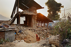 "A destroyed home in Kagati village. Village elders say around 400 homes and 300 cow sheds were destroyed in the 2015 earthquakes. ""People still cry,"" said Charkraman Shreshta Balami, vice principal at the local school. <br />