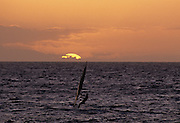 Windsurfing, Ocean, Maui, Hawaii