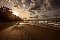 Puerto Viejo, Costa Rica. Copyright 2017 Reid McNally.