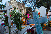 A Mexican woman carries red cockscomb flowers to the gravesite of relatives for Day of the Dead festival known in Spanish as Día de Muertos at the old cemetery October 31, 2013 in Xoxocotlan, Mexico.  The festival celebrates the lives of those that died.