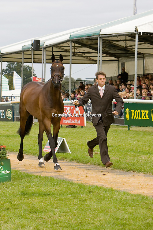 Sam Griffiths at Burghley Horse Trials 2009