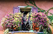 Flowers on a Balcony in Verona, Italy