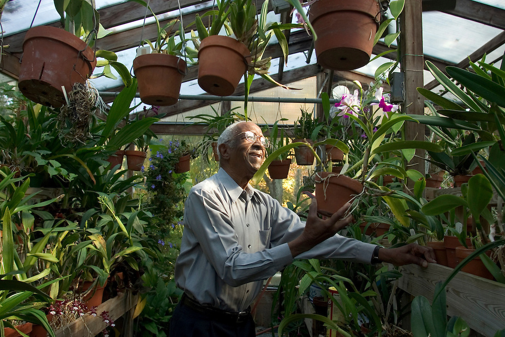 Duke University History Professor Emeritus John Hope Franklin tends to an orchid inside his Durham greenhouse filled with a variety of the exotic orchids, including two strands named after him. Franklin recently won the 2006 John W. Kluge award for his lifetime achievements in the humanities and is author of the seminal book From Slavery to Freedom: A History of African-Americans, now in its seventh edition. Photo by DL Anderson.