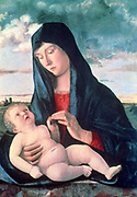 Madonna and Child' 1480. Giovanni Bellini (1426-1516) Italian Renaissance painter. Mother Infant Virgin Blue