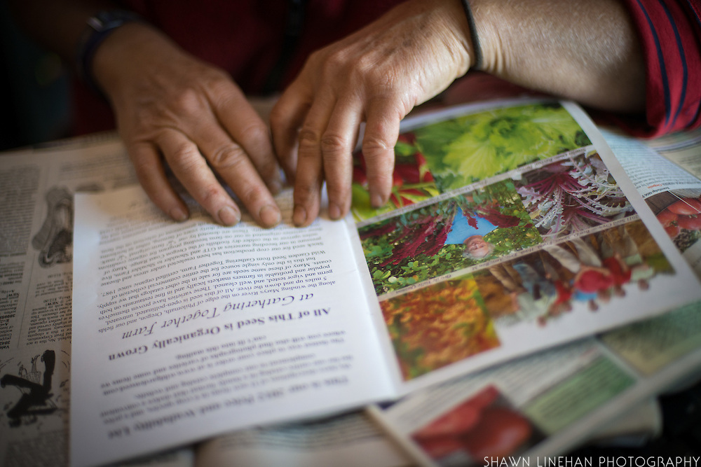 Hands on a book about seeds.