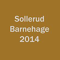 2014_Sollerud