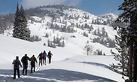 Cross-country skiers make their way toward Mt. Washburn and Dunraven Pass in Yellowstone National Park.