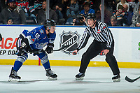 KELOWNA, CANADA - FEBRUARY 12: Linesman Tim Plamondon stands at the face off with Tanner Kaspick #16 of the Victoria Royals against the Kelowna Rockets  on February 12, 2018 at Prospera Place in Kelowna, British Columbia, Canada.  (Photo by Marissa Baecker/Shoot the Breeze)  *** Local Caption ***