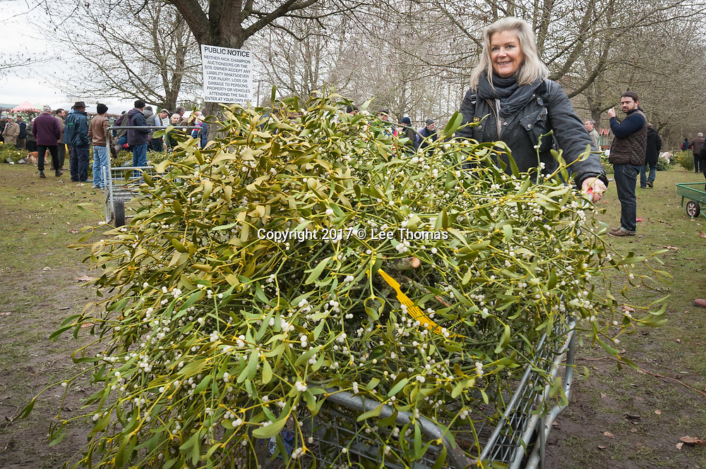 Burford House Garden Stores, Tenbury Wells, Worcestershire, UK. 5th December 2017. Buyers flock to Burford House in Tenbury Wells to take part in the annual mistletoe, wreaths, holly and Christmas tree auctions. Pictured: Customers use trollies to carry their bunches of mistletoe to their vehicles. // Lee Thomas, Tel. 07784142973. Email: leepthomas@gmail.com  www.leept.co.uk (0000635435)