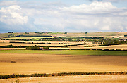 Summer landscape of golden rolling arable fields view north west from near Aldbourne, England, UK