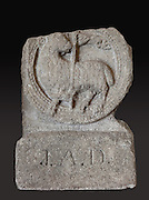 Sculpted tombstone with Agnus Dei or the lamb of God, from Glastonbury Abbey, a Benedictine monastery founded in the 7th century, enlarged in the 10th century, destroyed by fire in the 12th century and rebuilt then sacked in the Dissolution of the Monasteries, in Glastonbury, Somerset, England. Christian legend claims it was founded by Joseph of Arimathea in the 1st century AD, and it has many ties to Arthurian legend, including that he was buried here. The building is a Scheduled Ancient Monument. Picture by Manuel Cohen