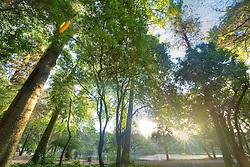O Parque Farroupilha, também conhecido como Parque da Redenção, é o parque mais tradicional e popular de Porto Alegre, sendo um local tradicionalmente visitado pelos porto-alegrenses nas horas de descanso, seja para praticar esportes ou simplesmente tomar um chimarrão com a família. FOTO: Jefferson Bernardes/Preview.com