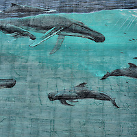Florida&rsquo;s Marine Life Mural by Wyland in Miami, Florida<br />