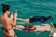 Schnorchler,  Eilat, Rotes Meer, Israel.|.snorkeller , Eilat, Red Sea, Israel.