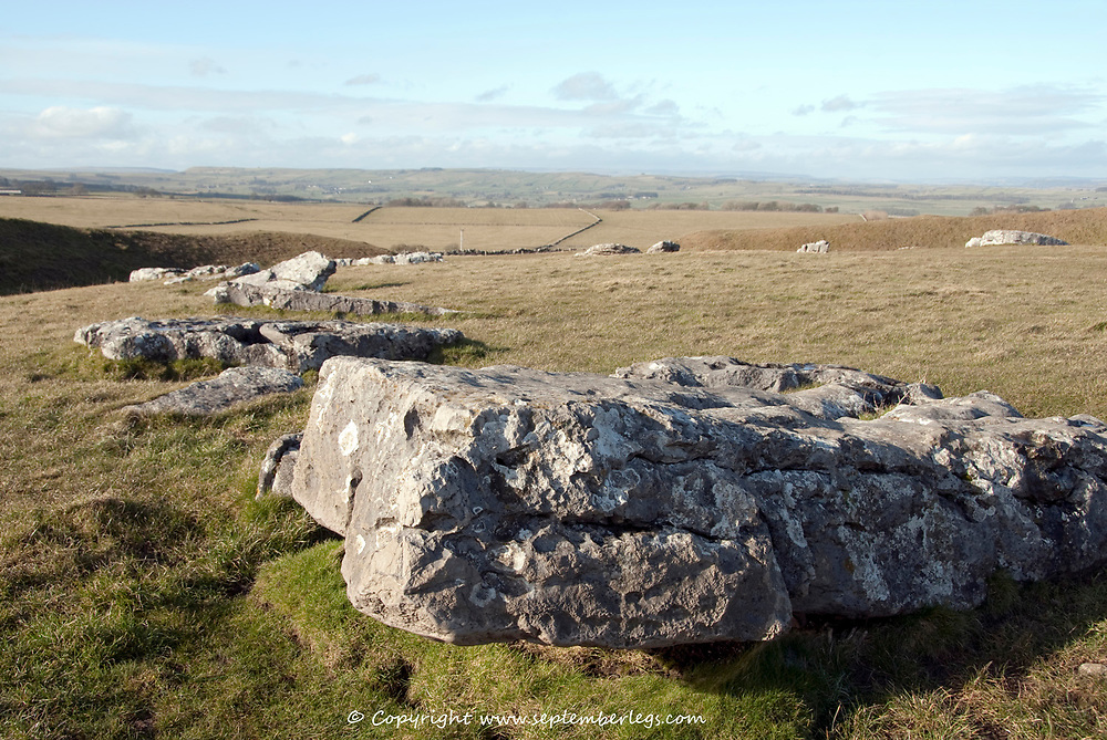 Derbyshire, UK 8 March: A weather beaten ancient limestone sarcen stone lies fallen on 8th March 2015 at Arbor Low Stone Circle, Peak District