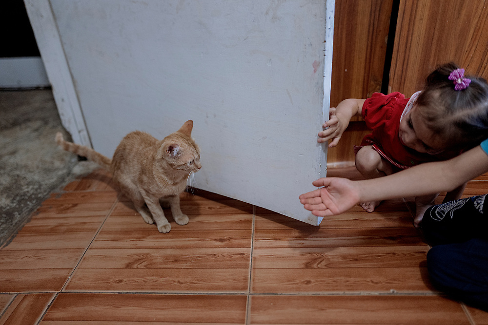 Mohamed and Lilian plays with the cat.