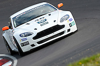 #46 Desmond Small/Richard Meris, DJ Small Ltd, Aston Martin Vantage GT4 during 2014 Aston Martin GT4 Challenge. at Oulton Park, Little Budworth, Cheshire, United Kingdom. April 19 2014. World Copyright Peter Taylor/PSP. Copy of publication required for printed pictures.  Every used picture is fee-liable. http://archive.petertaylor-photographic.co.uk