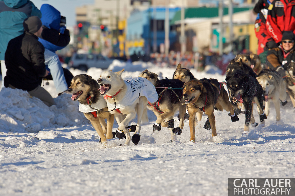 March 7th, 2009:  Anchorage, Alaska - The team of Paul Gebhardt out of Kasilof, Alaska enters the first turn at the start of the 2009 Iditarod Sled Dog Race.