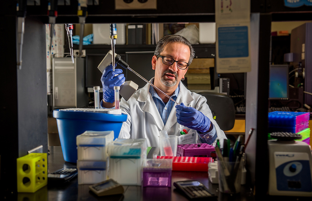 Robert C. Alaniz, Ph.D. Assistant Professor and Director College of Medicine Cell Analysis Facility