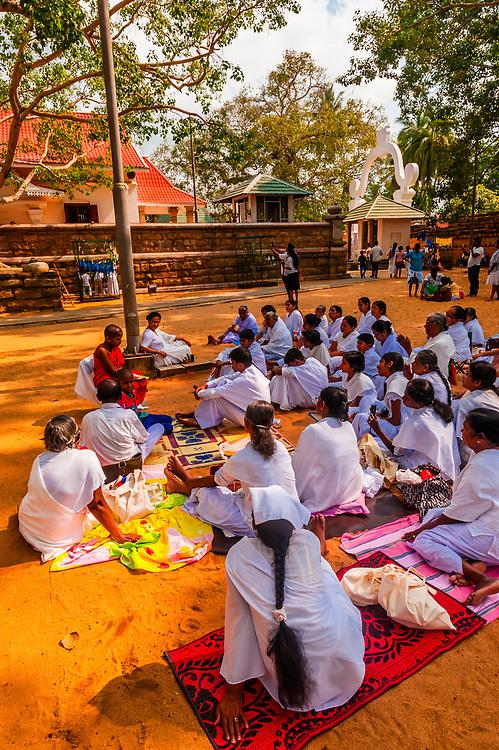 A Novice Buddhist Monk gives a lesson, Sri Maha Bodhi, the sacred bodhi tree. Anuradhapura, North Central, Sri Lanka.
