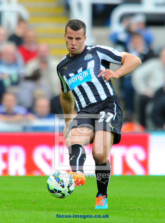 Steven Tayor of Newcastle United passes the ball during the Barclays Premier League match at St. James's Park, Newcastle<br /> Picture by Greg Kwasnik/Focus Images Ltd +44 7902 021456<br /> 18/10/2014