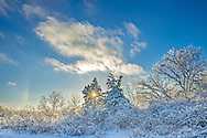 """This was taken in Rock Cut State Park near Rockford. It was a couple days after an ice storm and a 6"""" snowfall. Since the temperature was in the single digits, ice remained on all the trees. To the left of the sun is a faint sundog. It was constantly changing as ice crystals moved through the air.<br /> <br /> Date Taken: 12/23/13"""