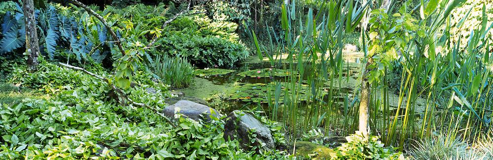 Private Garden designed by Roberto Burle Marx