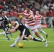 Dundee's Rhys Healey takes a tumble under a challenge from Hamilton Academical's Lucas Tagliapietra - Hamilton Academical v Dundee, Ladbrokes Premiership at New Douglas Park<br /> <br /> <br />  - &copy; David Young - www.davidyoungphoto.co.uk - email: davidyoungphoto@gmail.com