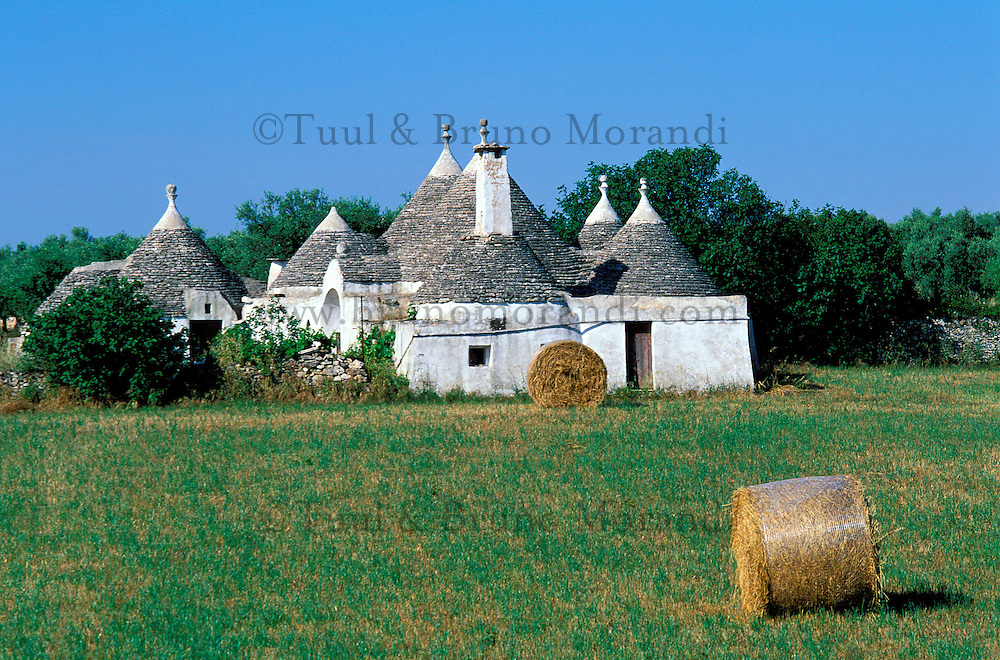 Italie, Les Pouilles, Alberobello, Trulli, logements traditionnels //  Trulli (typical dwellings), Alberobello, Puglia, Italy
