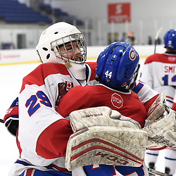 TORONTO, ON  - JAN 7,  2018: Ontario Junior Hockey League game between the Toronto Jr. Canadiens and the Buffalo Jr. Sabres, Dalton Ewing #29 of the Toronto Jr. Canadiens celebrate the win after the overtime period.<br /> (Photo by Andy Corneau / OJHL Images)
